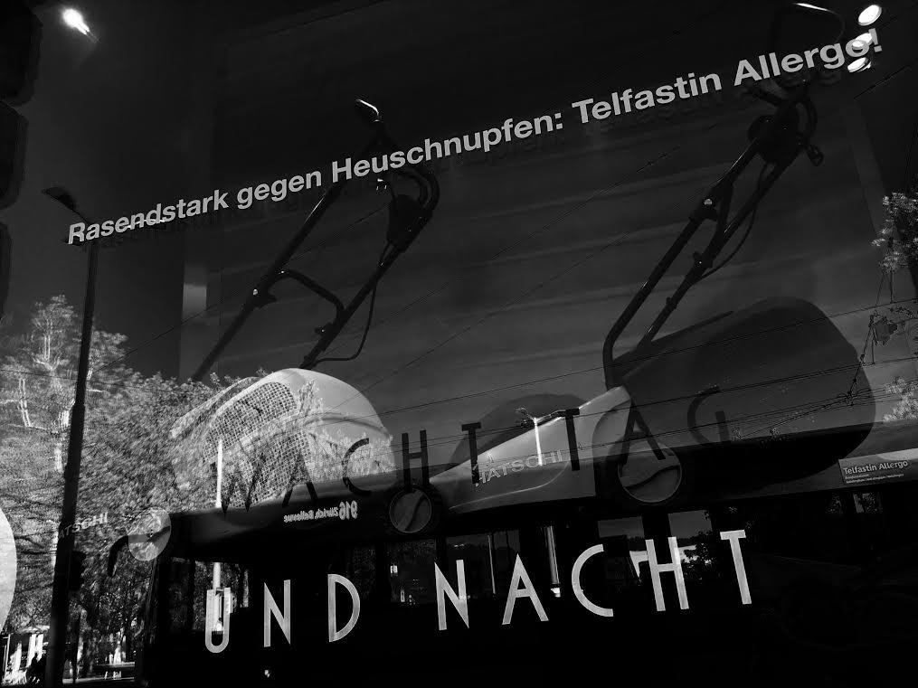 schaufenster49-mai_2032
