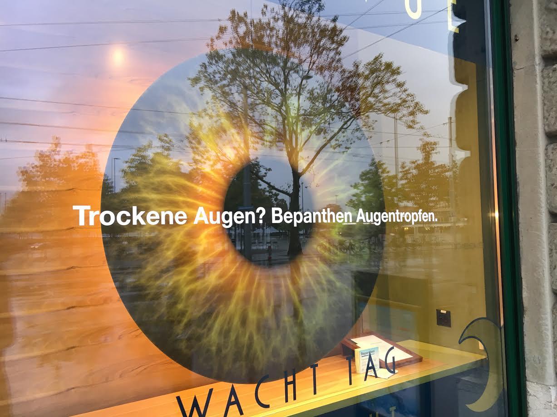 schaufenster55-oktober_2126