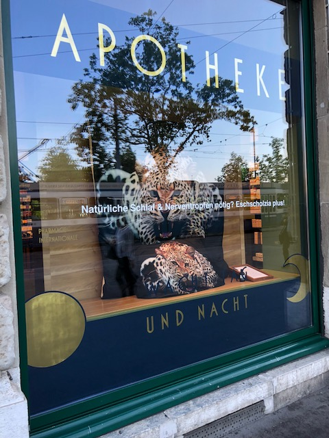 schaufenster82-august_3690